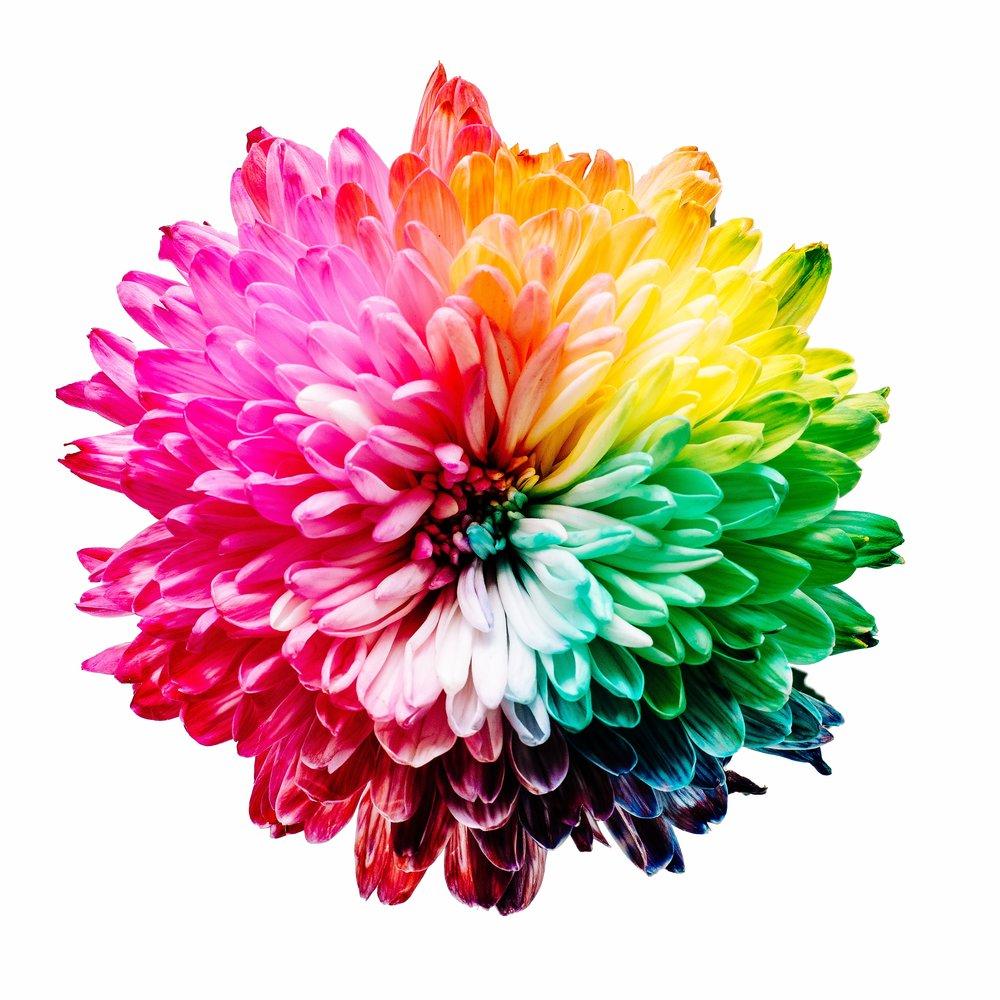 app design color schemes matter