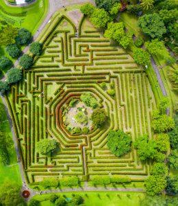 maze user interface