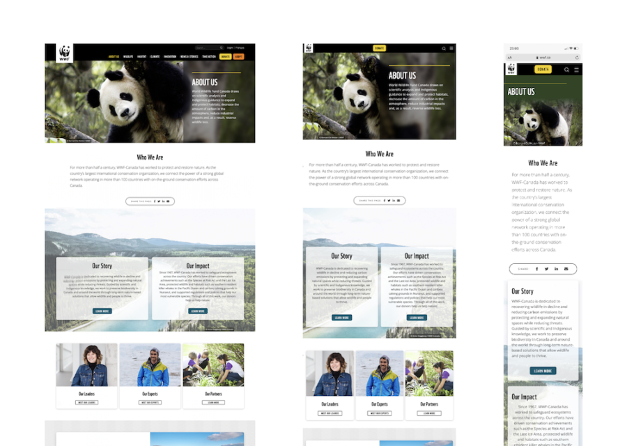 Image of wwf.ca layouts on desktop, tablet, and mobile
